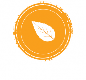 rooibos thé rouge - nature aromatisé