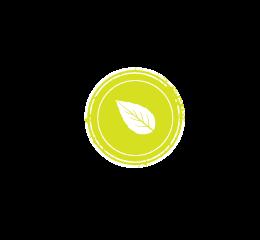thé vert nature - thé vert aromatisé