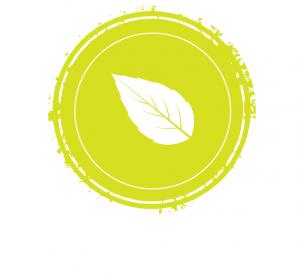 thé vert nature-aromatisé